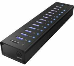 Raidsonic ICY BOX IB-AC6113 13-Port USB 3.0 Hub