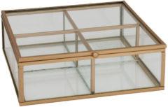 Goudkleurige THEEDOOS GOUD 4 vaks glas en metaal 15x15x5.5cm LIMITED