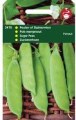 Hortitops Peulen Pisum sativum Heraut - Peulvruchten - 100gram