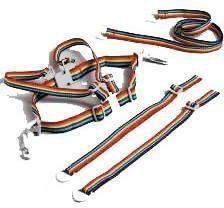 Rode ISI Mini - Tuigje Looplijn - Regenboog