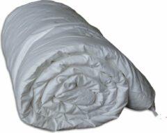Witte Moerbei Zijden dekbed - Jeannette Vite® 240x220cm