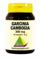 SNP Garcinia cambogia 300 mg 60 Capsules