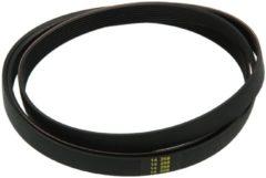 Zanussi-electrolux Riemen 1287 PH 8 TEM (elastischer Keilrippenriemen, heller Kunststoff) für Trockner und Waschmaschinen 50237204008