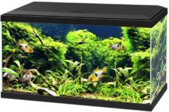 Ciano Aquarium 60 Led Cf - 80 x 60 x 33,1 cm -58 L - Zwart