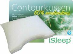 ISleep Contourkussen Dons (60% dons) - 60x70 cm - Wit