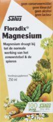 Floradix magnesium elixer 250 ml