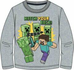 Minecraft t-shirt lange mouw - grijs - met Steve en creepers - 116 / 6 jaar