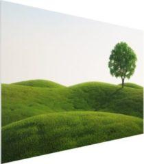 PPS. Imaging Forex Fine Art Print - Wandbild Grüne Ruhe - Quer 2:3