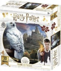 Tucker's Fun Factory 3D Image Puzzel - Harry Potter Hedwig (500)