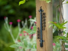 Zwarte Nature Profielthermometer geepoxeerd metaal 41x10x2,5cm