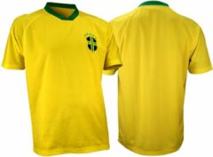 Avento Voetbalshirt Supporter - Senior - Geel/Blauw/Groen - XXL