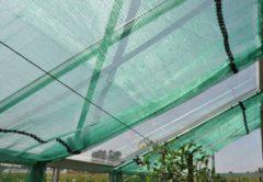 Royal Well Schermgaas groen voor tuinkas - 400 cm