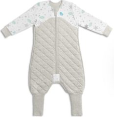 Love to Dream Stage 3 Sleepsuit Warm 24 tot 36 maanden White/wit Grey/grijs
