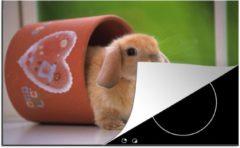 KitchenYeah Luxe inductie beschermer Hangoordwerg - 78x52 cm - Baby hangoor dwerg in een bloempot - afdekplaat voor kookplaat - 3mm dik inductie bescherming - inductiebeschermer