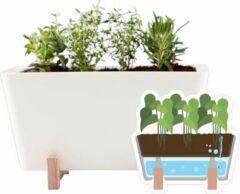 WaterWick PlantBox wit