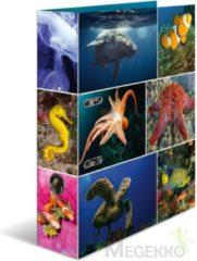 HERMA 7203 Motief-ordners A4 dieren - zeedieren