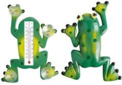 Esschert design Esschert Thermometer kikker