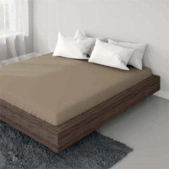Suite sheets Jersey Hoeslaken Taupe Lits Jumeaux XL 200 x 220/230 cm