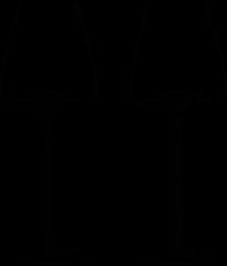 Transparante Zieher Intense wijnglas set van 2