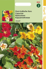 Buzzy Seeds Hortitops Zaden - Tropaeolum Jewel Dubbelbl. Gemengd Laag