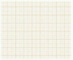 Witte Clairefontaine Velijn Ruitjespapier – 500 x 650 mm – 50 stuks