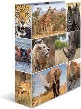 HERMA 7168 Motief ordner A4 dieren - afrika dieren