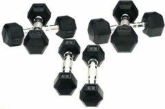 RS Sports Hexa Dumbells - 2 x 22 kg - Zilver/Zwart