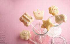 Oranje Haba Family Food Stars - Bakvorm cakepops Hartenlust