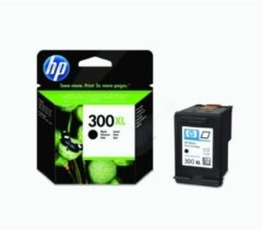 HP 300XL - hoog rendement - zwart - origineel - inktcartridge (CC641EE#UUS)