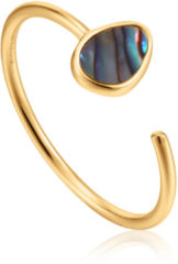Ania Haie Ringen AH R027-02G 925 Sterling Zilver Turning Tides Ring Goudkleurig