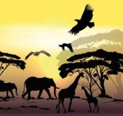 Gele Ambiente Africa Safari papieren servetten