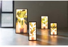 Zuiver Grow XXL Vloerlamp - Roomdivider - 54x8x112 - LED - Elephant Ear Plant