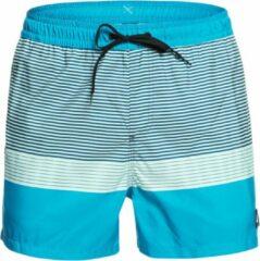 Quiksilver Tijuana Volley 15 Boardshorts blauw
