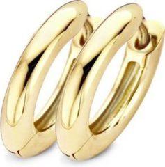 Blush Oorringen van 14 karaat goud 7133YGO