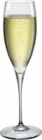 Afbeelding van Transparante Bormioli Rocco Bormioli Champagneglazen Premium 26 Cl - 6 Stuks