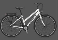 28 Zoll Damen City Fahrrad Sprint Discover Lady Nexus 3 Seventeen Sprint grau