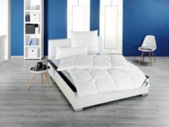 Witte Frankenstolz - All year dekbed enkel - Microvezel - 95°C wasbaar - 240x220