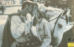 Blauwe Fame puzzles Ouderwetse Puzzel 1000 Stukjes - Liefde Koppel met paard