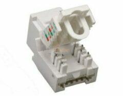 Haiqoe Ethernet jack Toolless CAT6 UTP Keystone wit