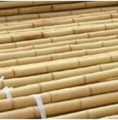 Intergard Bamboestokken tonkinstokken ø30mm 305cm lang (per 25 stuks)