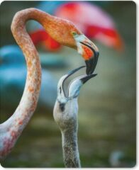 MousePadParadise Muismat Dierenfamilies - Flamingo die haar baby voedt muismat rubber - 19x23 cm - Muismat met foto