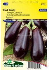 Paarse Sluis Garden - Aubergine Black Beauty
