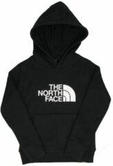 Zwarte The North Face Youth Drew Peak Hoody