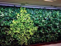 Luxform Lichtlijn Blanes Zonne-energie 3,4 Meter Glas