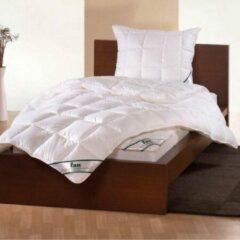 Witte Frankenstolz - Zomerdekbed - Wash Cotton - 260x220