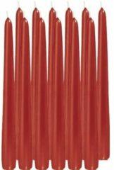 Trend Candles 12x Rode dinerkaarsen 25 cm 8 branduren - Geurloze kaarsen - Tafelkaarsen/kandelaarkaarsen