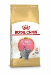 Royal Canin Fbn British Shorthair Kitten - Kattenvoer - 10 kg - Kattenvoer