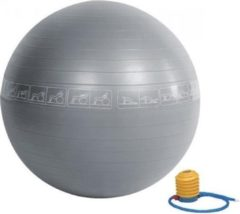 RS Sports Fitnessbal anti burst- Ø 65 cm - Grijs