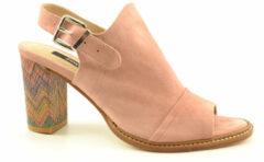 Roze Zinda 4706