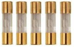 Hoogvermogenszekering - 20 Ampere - Quality4All